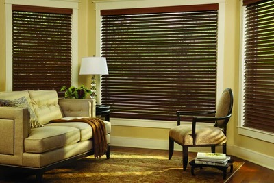 3 Benefits of Custom Blinds for Homes Near Richmond, Virginia (VA) like Parkland for Living Rooms